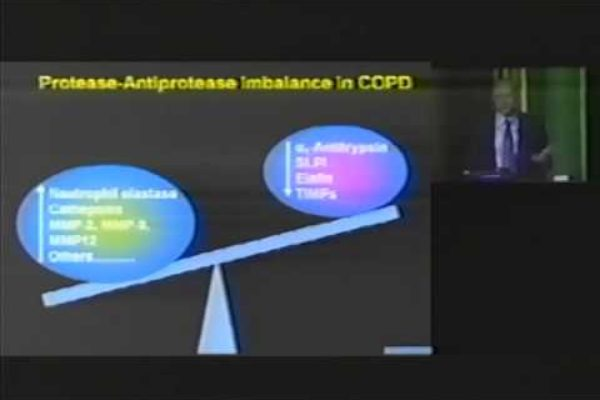 hawaii-copd-education-day-2008