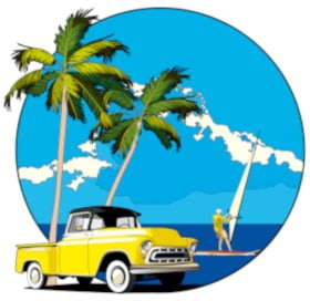 Pickup Truck Palms Surfer, Hawaii COPD Coalition